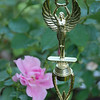 2010 Trophies in Our Garden :
